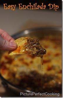 Easy Enchilada Dip 2